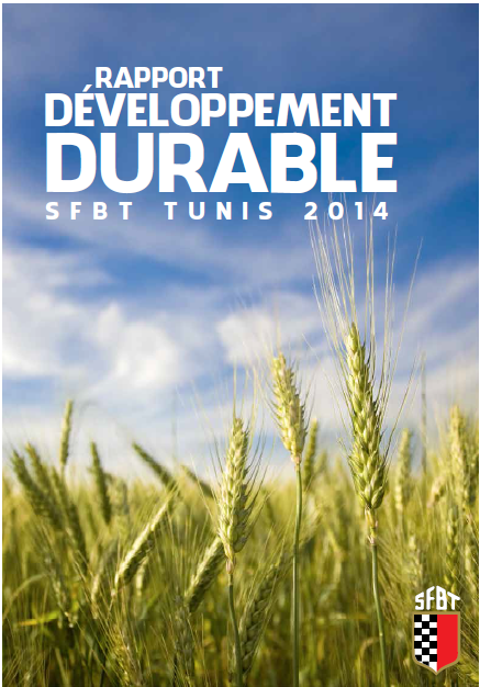 SFBT-Rapport De Developpement Durable