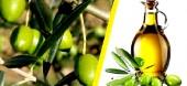 La Tunisie, premier exportateur mondial d'huile d'olive, merci au marché européen