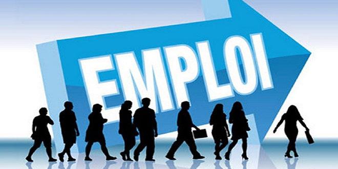 Répartition des emplois selon les secteurs d'activités