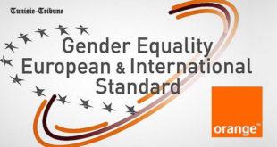Orange, 1er opérateur à obtenir la certification GEEIS qui met en valeur sa politique d'égalité professionnelle (déjà reconnue)
