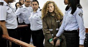 12 chefs d'inculpation requis contre Ahed Tamimi par la machine israélienne à broyer la résistance des Palestiniens