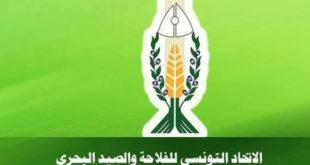 UTAP : Appel à candidatures aux élections des délégués pour le 16ème congrès national