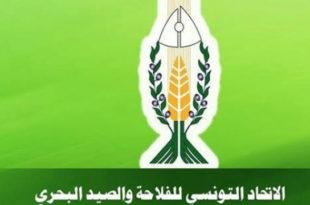 Prix des semences de céréales: L'UTAP rejette la hausse des prix