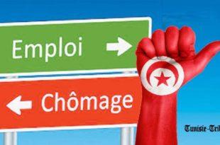 Hausse du taux de chômage en Tunisie: détails par région (voire de 23% à 26,3% dans le Sud tunisien)