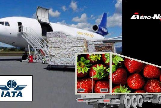 """L'IATA lance la """"CEIV Fresh"""", une nouvelle Certification d'Excellence industrielle pour le transport aérien des produits périssables"""