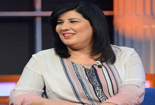 Le gouvernement porte plainte contre Abir Moussi et les députés du PDL