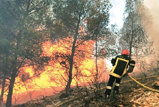 112 incendies maîtrisés ces dernières 24 heures