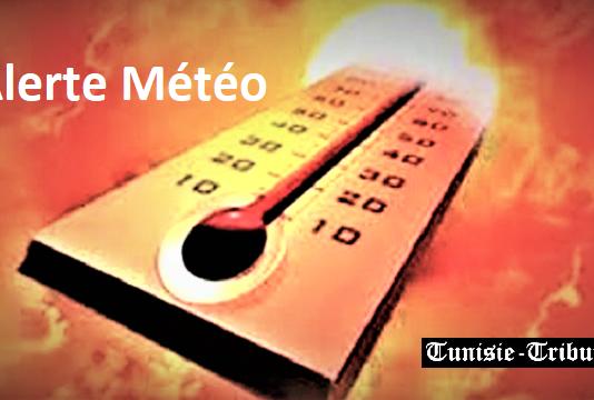 Alerte Météo pour ce week-end... voire des pics de températures de 50 degrés