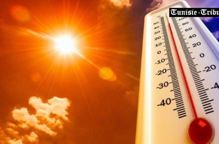 Août 2021, le mois le plus chaud en Tunisie depuis 1950
